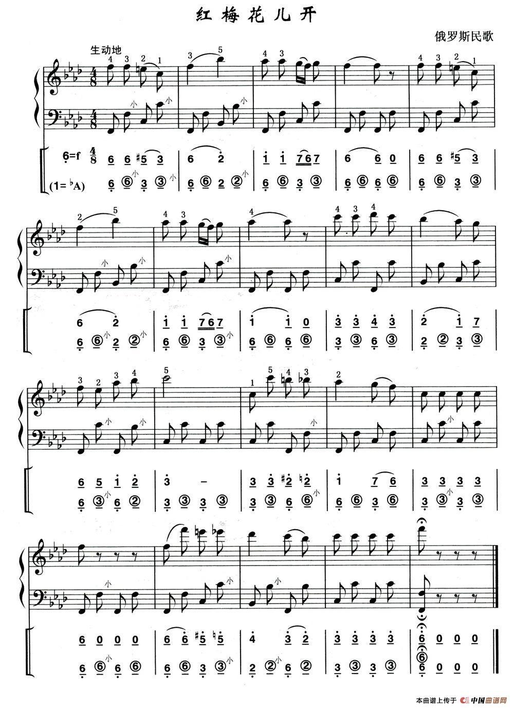 红莓花儿开(俄罗斯民歌)(线简谱混排版)