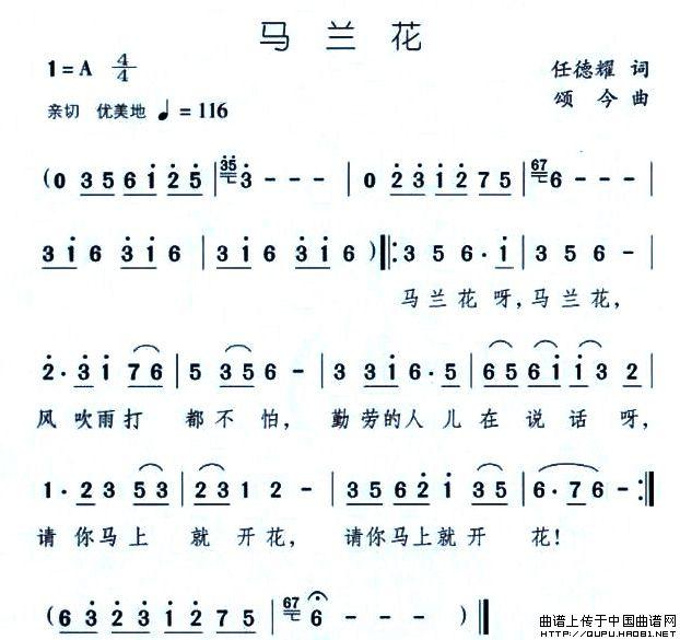 马兰花_简谱_搜谱网